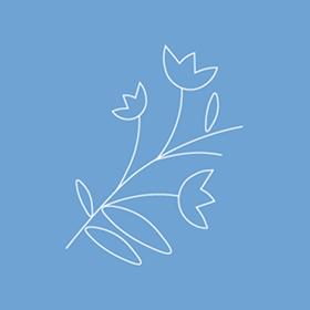 Payhembury Village Hall | Web